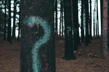 Des arbres avec des points d'intérrogation