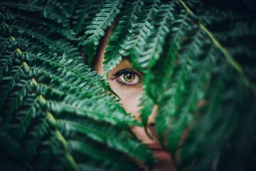 person hiding on tree leaves